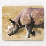 Rhinoceros Mousepads