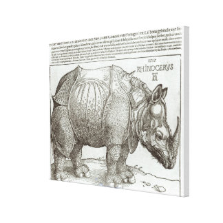Rhinoceros, print given to Maximilian I (1459-1519 Canvas Print