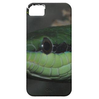 Rhinoceros ratsnake iPhone SE/5/5s case