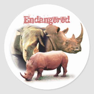 Rhinoceros The Endangered Species Sticker