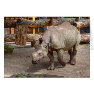 Rhinoceros unicornis card