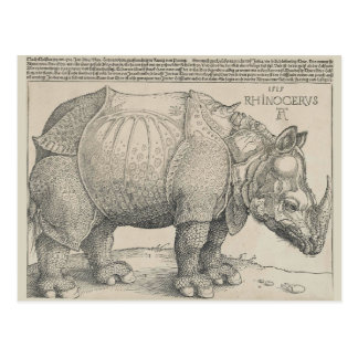 Rhinoceros, Woodcut by Albrecht Durer Postcards