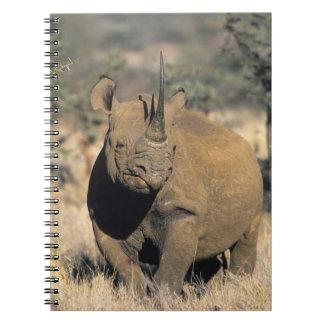 Rhinocerous negro, (bicornis del Diceros), septent Spiral Notebooks