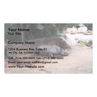 Rhinocers que duerme debajo de sombra tarjetas de visita
