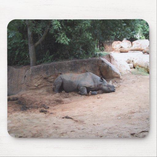 Rhinocers Sleeping Under Shade Mouse Pad