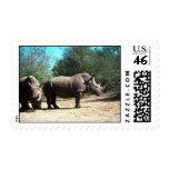 Rhinos blancos sello
