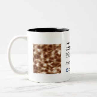 RHK IOM July 2013 Two-Tone Coffee Mug