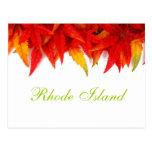 Rhode Island Autumn Leaves Postcard