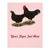 Rhode Island Red Bantams Flyer
