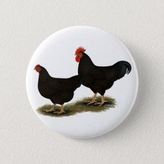 Rhode Island Red Bantams Pinback Button