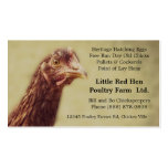 Rhode Island Red Chicken Pullet - Poultry Farmer Business Card Template