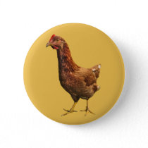 Rhode Island Red Hen Chicken Button