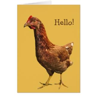 Rhode Island Red Hen Chicken Card