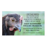 Rhode Island Red Hen Chicken Egg Farmer Double-Sided Standard Business Cards (Pack Of 100)