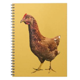 Rhode Island Red Hen Chicken Notebook
