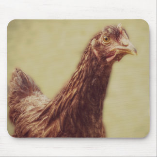 Rhode Island Red Pullet - Chicken Picture Mouse Pad