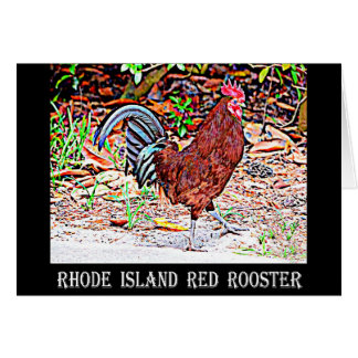 Rhode Island Red Rooster Card