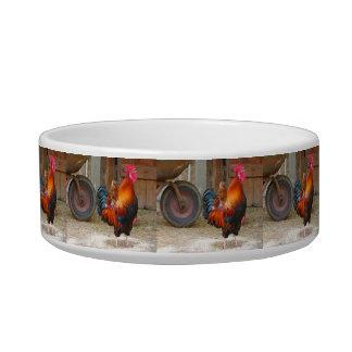 Rhode Island Red Rooster Crowing in Barnyard Cat Water Bowl
