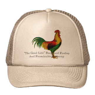 Rhode Island Red Rooster Mesh Hats