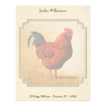 Rhode Island Red Rooster Yellow Background Letterhead