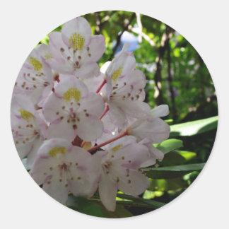 Rhodendrons blanco pegatina redonda
