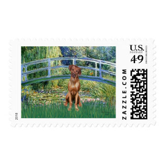 Rhodesian Ridgeback 1 - Bridge Postage Stamps