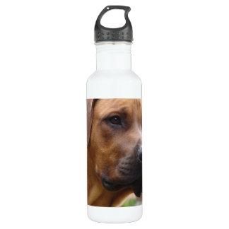 Rhodesian Ridgeback 24oz Water Bottle