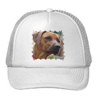 Rhodesian Ridgeback Baseball Hat
