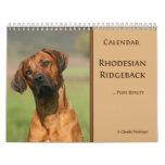 Rhodesian Ridgeback calendar 2011
