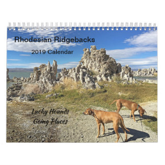 Rhodesian Ridgeback Calendar 2019 Going Places