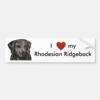 Rhodesian Ridgeback Dog Art - zulu Bumper Sticker