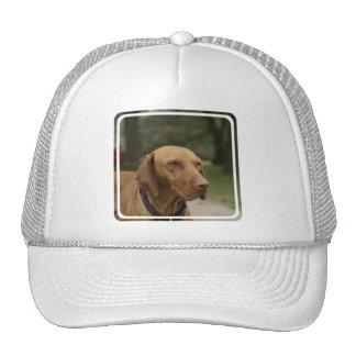 Rhodesian Ridgeback Dog Baseball Hat