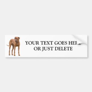 Rhodesian Ridgeback dog beautiful photo custom Bumper Sticker