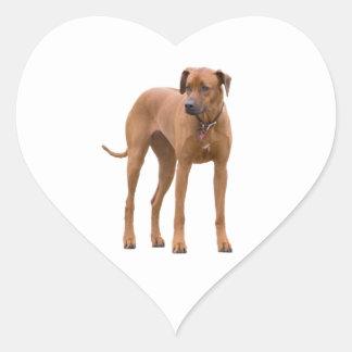 Rhodesian Ridgeback dog beautiful photo, gift Heart Sticker