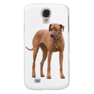 Rhodesian Ridgeback dog beautiful photo, gift Samsung Galaxy S4 Cover