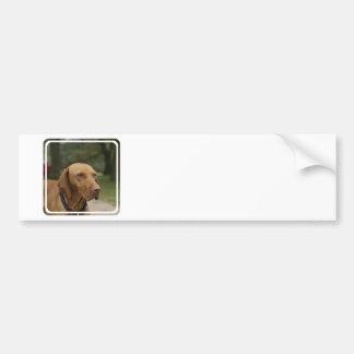 Rhodesian Ridgeback Dog Bumper Sticker Car Bumper Sticker