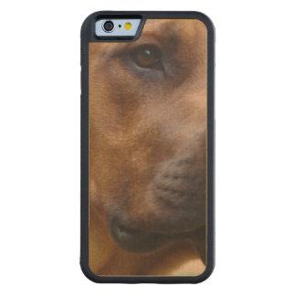Rhodesian Ridgeback Dog Carved® Maple iPhone 6 Bumper Case