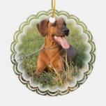 Rhodesian Ridgeback Dog Ornament