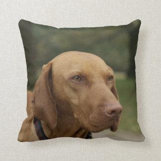 Rhodesian Ridgeback Dog Pillow
