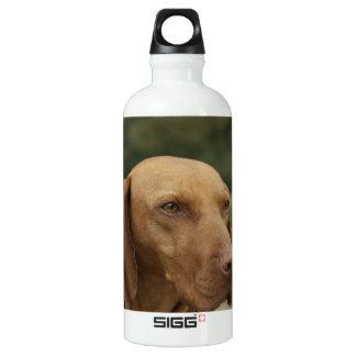 Rhodesian Ridgeback Dog SIGG Traveler 0.6L Water Bottle