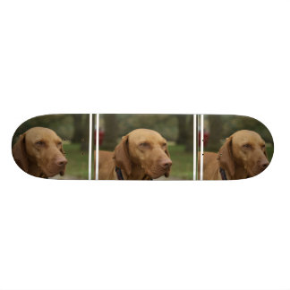 Rhodesian Ridgeback Dog Skateboard