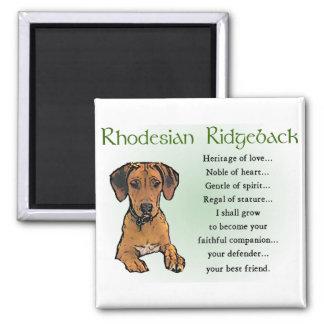 Rhodesian Ridgeback Gifts 2 Inch Square Magnet