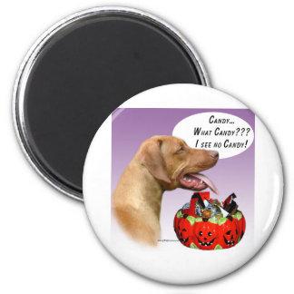 Rhodesian Ridgeback Halloween Candy 2 Inch Round Magnet