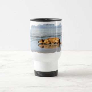 Rhodesian Ridgeback - Is the Water Cold? Travel Mug