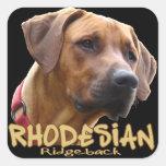 Rhodesian Ridgeback Calcomanías Cuadradass Personalizadas