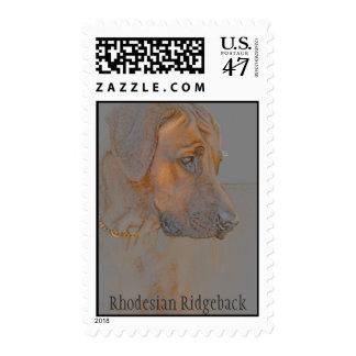 Rhodesian Ridgeback postage