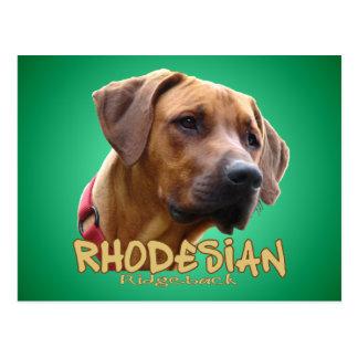 Rhodesian Ridgeback Postal