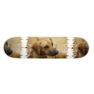 Rhodesian Ridgeback Puppy Skateboard