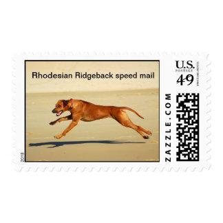 Rhodesian Ridgeback stamp