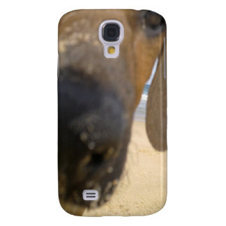 Rhodesian Ridgeback Stuff Samsung S4 Case